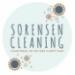 Venom Consulting Client   Sorensen Cleaning